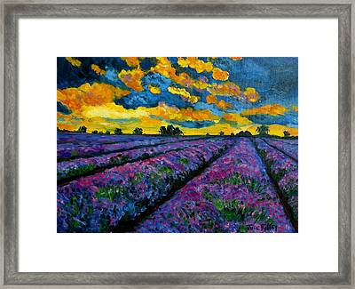 Lavender Fields At Dusk Framed Print
