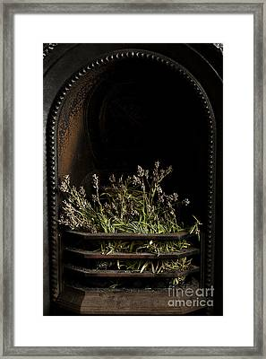 Lavender Fire Framed Print