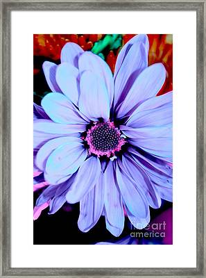Lavender Flower Framed Print by LLaura Burge