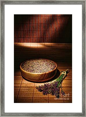 Lavender Flowers And Seeds Framed Print