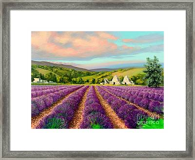 Lavender II Framed Print by Michael Swanson