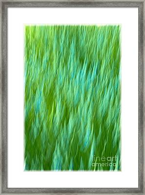 Lavender In Abstract Framed Print by Jonathan Nguyen