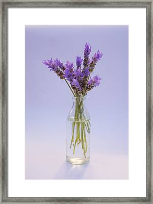 Framed Print featuring the photograph Lavender In Glass Vase by Jocelyn Friis