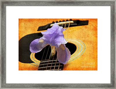 Lavender Iris And Acoustic Guitar - Texture - Music - Musical Instrument Framed Print