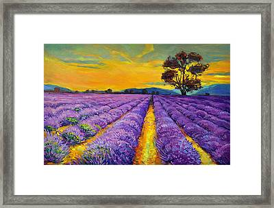 Lavender Framed Print by Ivailo Nikolov