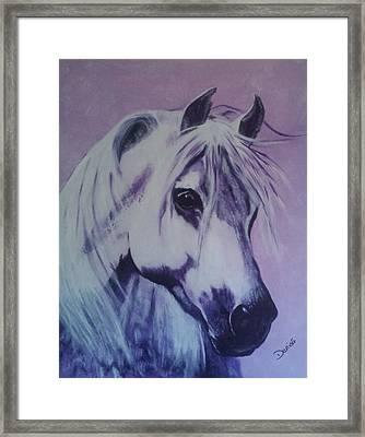 Lavender Lady Framed Print