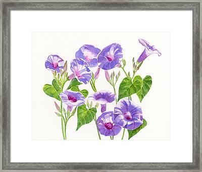 Lavender Morning Glory Flowers Framed Print by Sharon Freeman