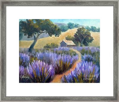 Lavender Path Framed Print