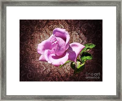 Lavender Rose Framed Print by Mariola Bitner