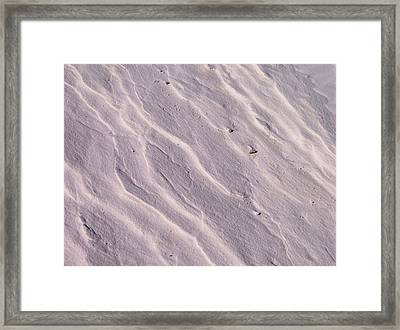 Lavender Sands Framed Print by The GYPSY And DEBBIE