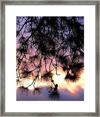 Lavender Sunset Painting Framed Print by Will Borden