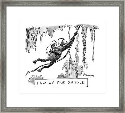 Law Of The Jungle Framed Print