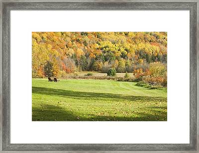 Lawn Chairs Overlooking Autumn Landscape In Vienna Maine Framed Print by Keith Webber Jr