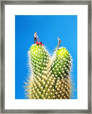 Lawn Mowing On Cactus Framed Print by Paul Ge