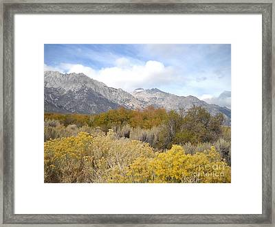 Layered Color Framed Print