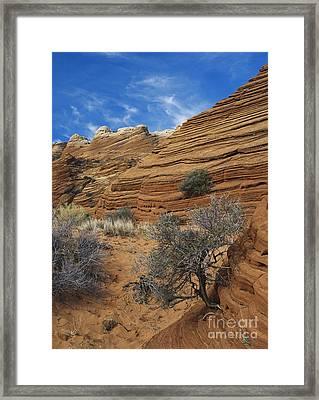 Layered Sandstone Framed Print by David Davis