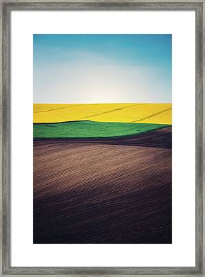 Layers Of Colorful Field Framed Print by Borchee