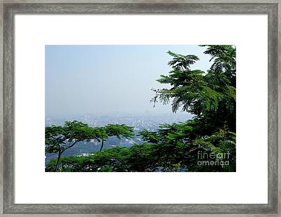 Layers Of Tree Framed Print