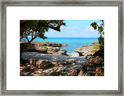 Lazy Cove Framed Print by Carey Chen