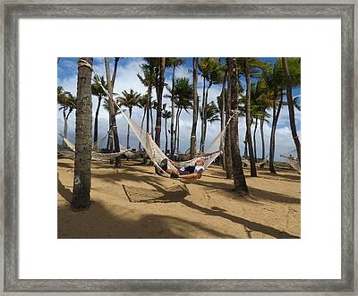 Lazy Day Framed Print by Irwin Karabell