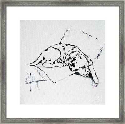 Lazy Day Framed Print by Jacki McGovern