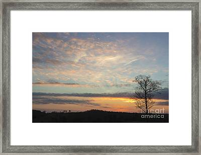 Lazy Day Framed Print by Michael Waters