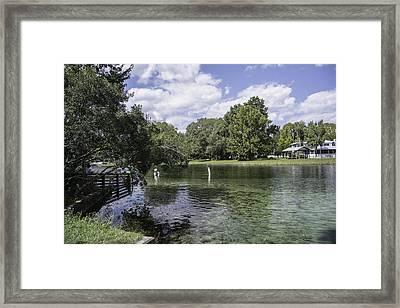 Lazy Day On The Rainbow River Framed Print by Judy Hall-Folde