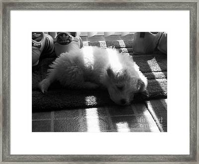 Framed Print featuring the photograph Lazy Days by Michael Krek