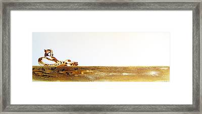Lazy Dayz Cheetah - Original Artwork Framed Print