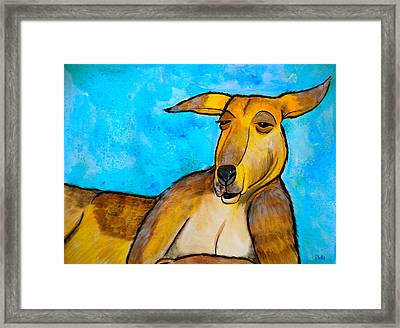 Lazy Roo Framed Print by Debi Starr