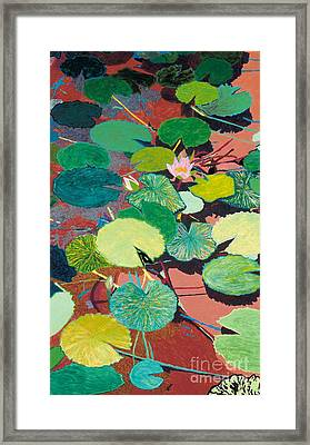 Lazy Summer Afternoon Framed Print by Allan P Friedlander