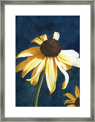 Lazy Susan Framed Print by Ken Powers