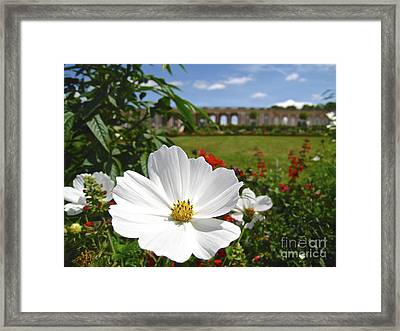 Framed Print featuring the photograph Le Fleur De Versailles by Suzanne Oesterling