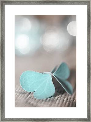 Le Papillon - The Butterfly - P05 Framed Print