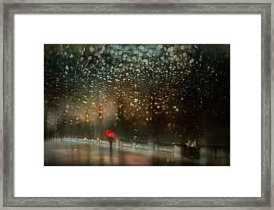 Le Pont Alexandre IIi Framed Print