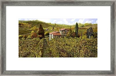Le Vigne Toscane Framed Print by Guido Borelli