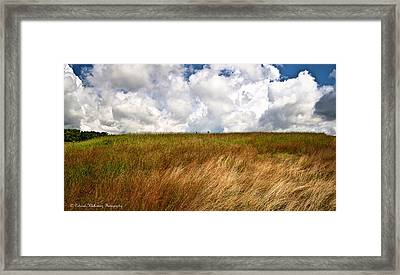 Leaden Clouds Over Field Framed Print