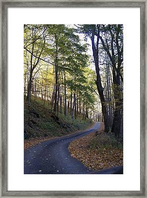 Leading Me Home Framed Print