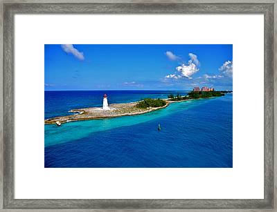Framed Print featuring the photograph Leading The Way To Paradise by Pamela Blizzard