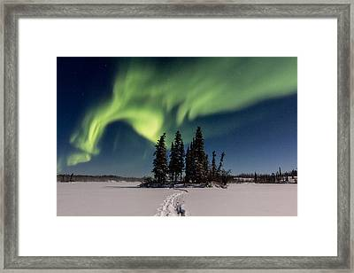 Leading The Way Framed Print by Valerie Pond
