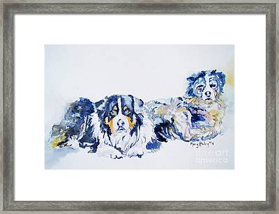 Leadville Street Dogs Framed Print