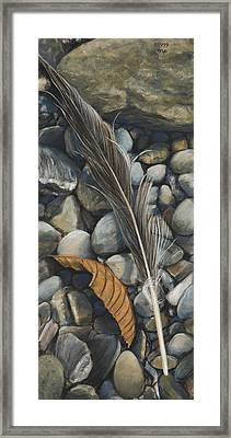 Leaf And Feather Framed Print