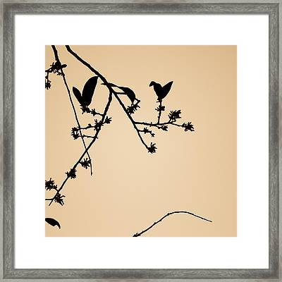 Leaf Birds Framed Print