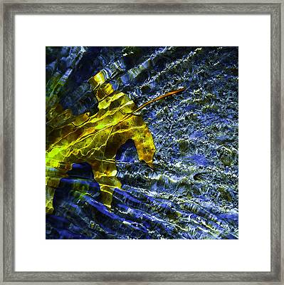 Leaf In Creek - Blue Abstract Framed Print by Darryl Dalton