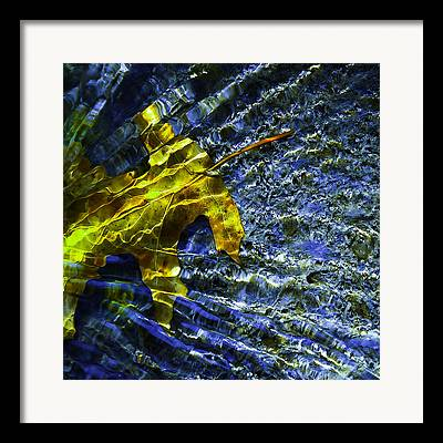 Water In Creek Framed Prints