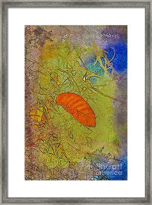 Leaf In The Moss Framed Print by Deborah Benoit