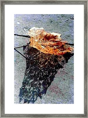 Framed Print featuring the photograph Leaf Lace In New Orleans Louisiana by Michael Hoard