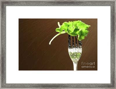 Leaf Of Lettuce On A Fork Framed Print by Sandra Cunningham