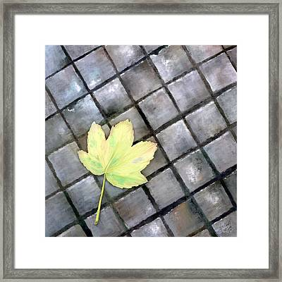 Leaf On Ground Framed Print by Ondrej Kollar