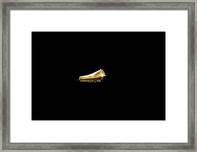 Leaf On Still Water  Framed Print